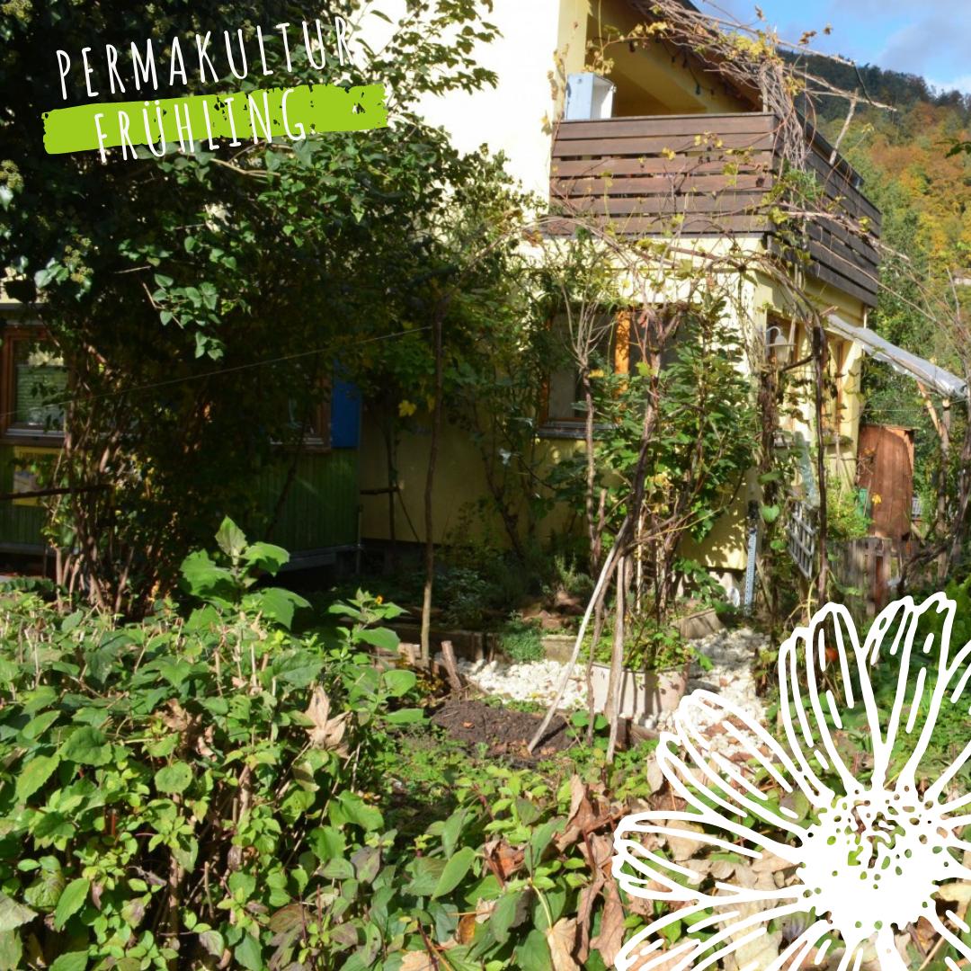 gelberhausgarten